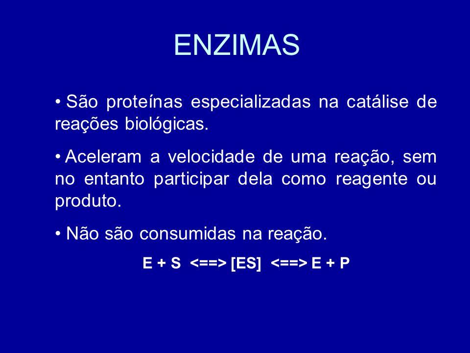 E + S <==> [ES] <==> E + P